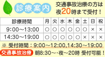 平日9時~13時 14時半~19時 土曜日9時~13時 事故治療8時30分~、夜20時まで受付可